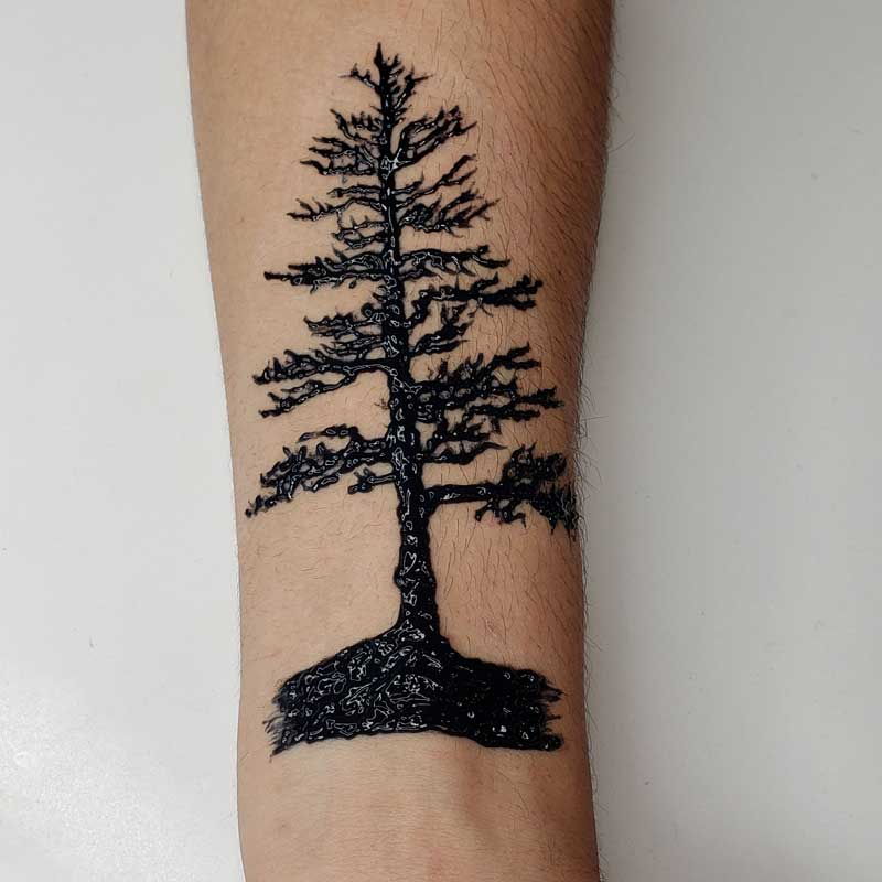 Pine tree realistic temporary tattoo made with a henna stencil and black jagua ink. Unlike black henna, jagua ink is 100% natural and safe.