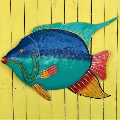 36in Metal Blue and Teal Angelfish by Caribbean Rays