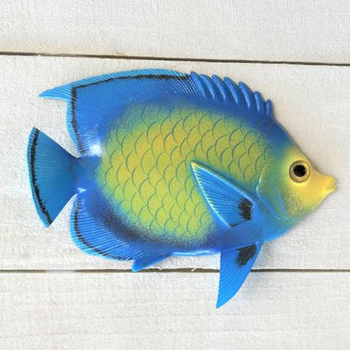 Princess Resin Tropical Fish Wall Accent by Caribbean Rays