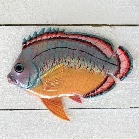 Spanish Hogfish Resin Tropical Fish Wall Decor by Caribbean rays