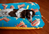 dachshund hot dog bed