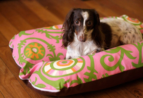 Pink and Green Vines Bunbed and Dachshund