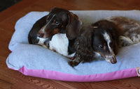 Pink Gray Fleece Bunbed, Dachshund Burrow Dog Bed
