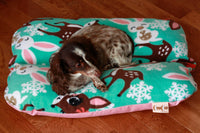 Cute Kawaii Deer Bunny on Aqua and Pink Bunbed, Dachshund Dog Bed, Bun Bed