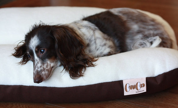White Ivory and Brown Fleece Bunbed Dog Bed, Bun Bed, Dachshunds