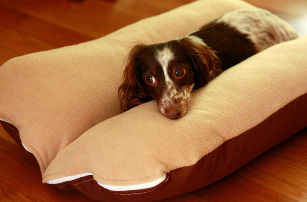 Beige Dachshund Dog Bed with Piebald Dachshund