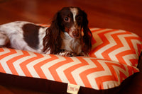 Orange Chevron Zig Zag Bunbed, Dachshund Hot Dog Bun Snuggle Burrow Dog Bed