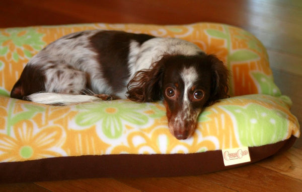 Mid Mod Yellow Flower Bunbed Dog Bed and Dachshund