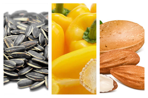 7 Foods That Increase Hair Growth