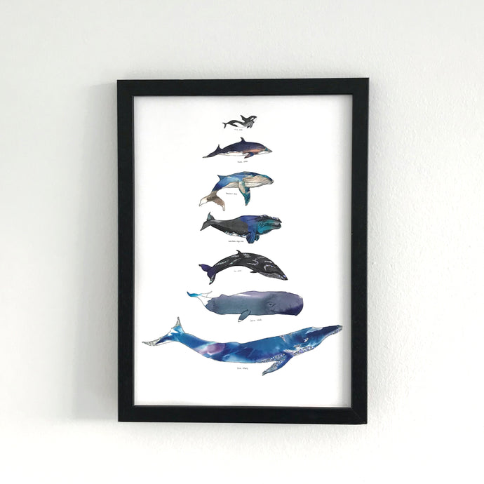 Whale Scale A4 Foiled Art Print