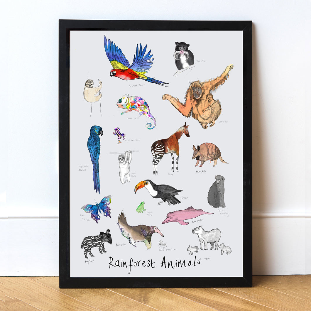 RainForest Animals Art Print