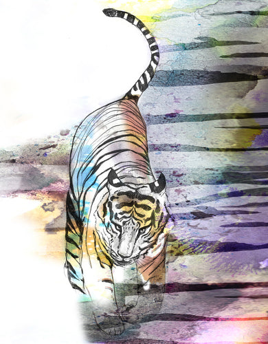 Tiger Tiger A2 size Giclee Print