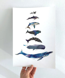 Shimmering Whales A4 Foiled Art Print