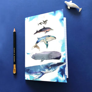 Whales of the World  A5 Notebook