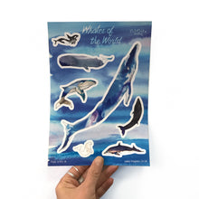 Whales of the World Sticker Set
