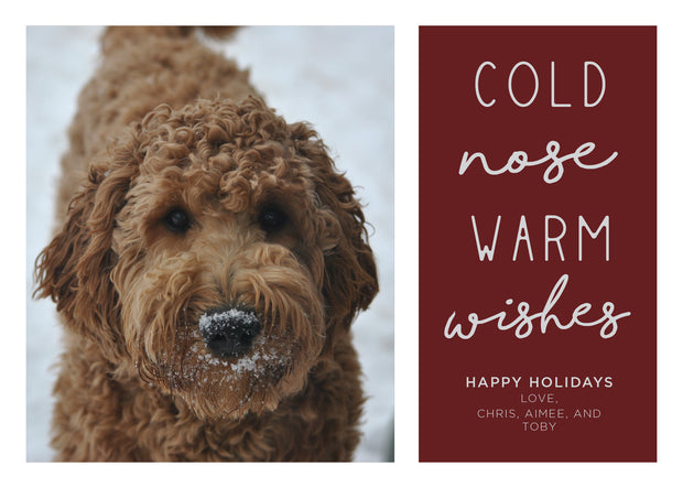 Cold Nose Warm Wishes