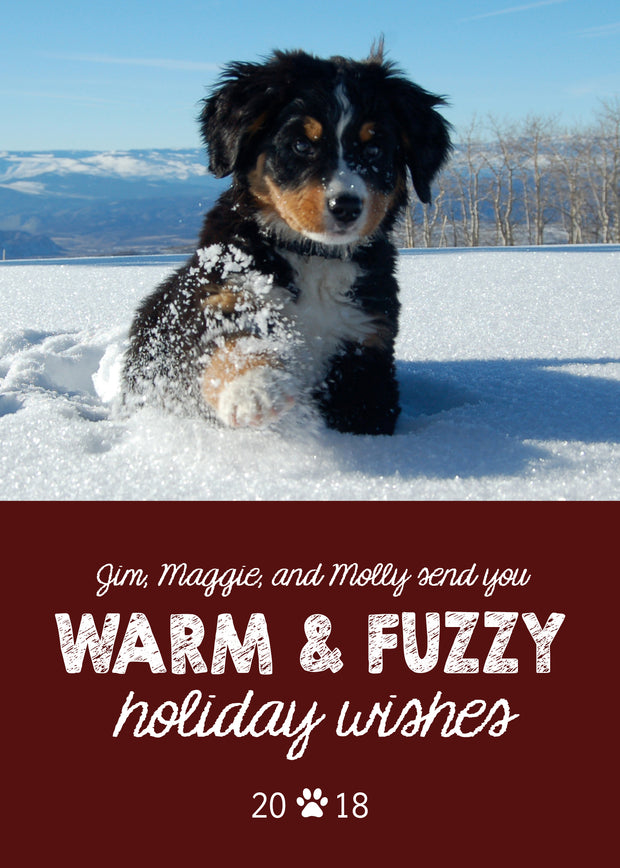 Warm and Fuzzy Holiday Wishes