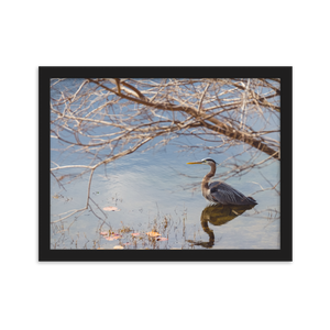 THE GOLDEN HOUR HERON