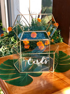 Card Box Terrarium at Rush Creek Golf Club Event - Wedding Rentals - Something Borrowed Minneapolis