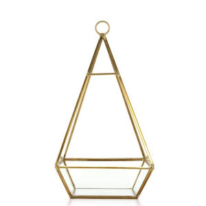 Terrarium 4-Sided Medium *Rental*