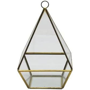 Terrarium 4-Sided *Rental*
