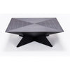 Satyagraha Coffee Table