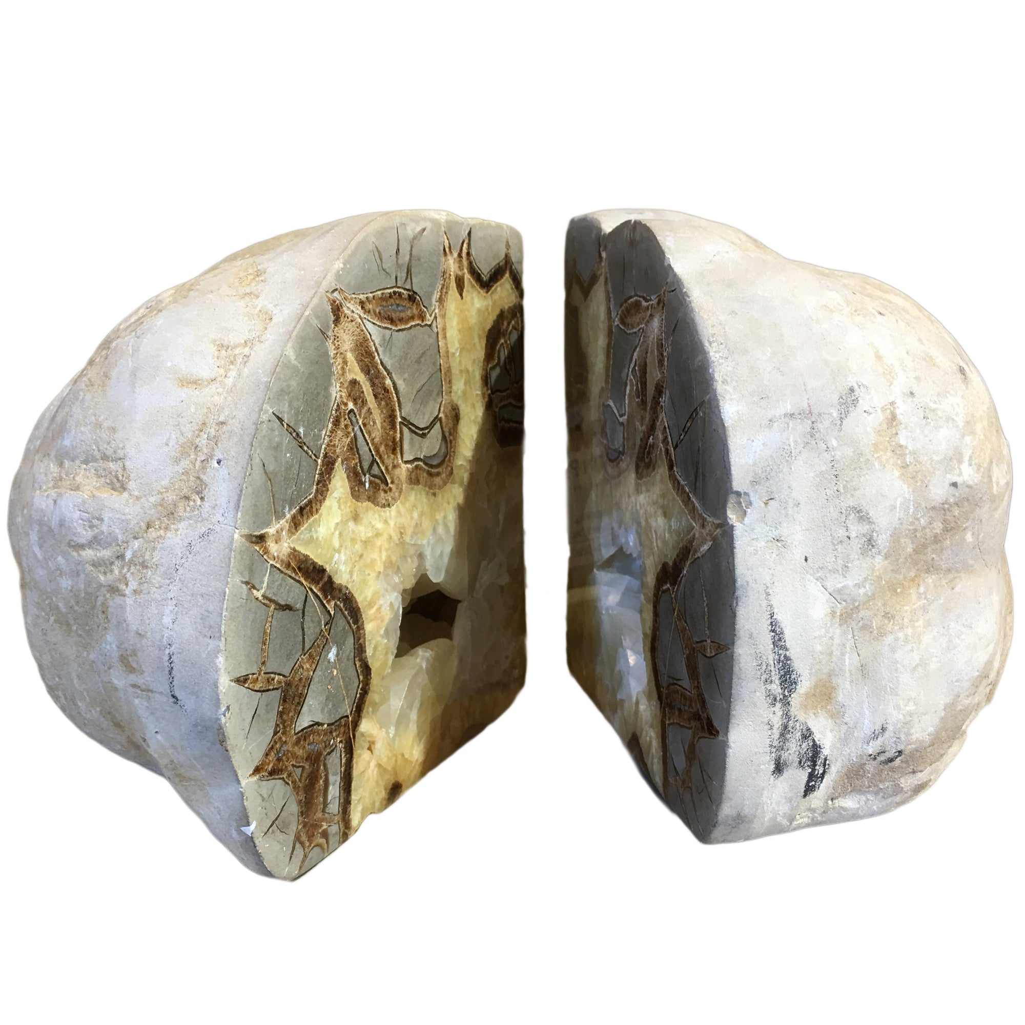 Septarian Nodule Bookends