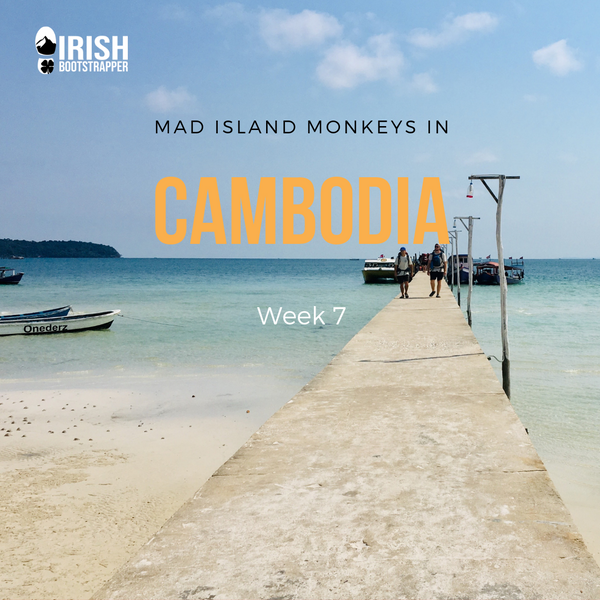 Mad Island Monkeys in Cambodia - Week 7