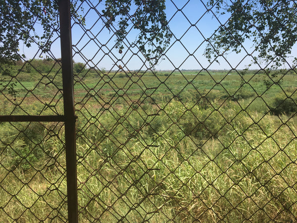Fence view from Choeng Ek Cambodia Killing Fields - Irish Bootstrapper