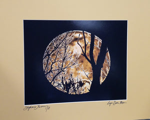 Super Moon photo with bare trees silhouetted, matted in tan, signed