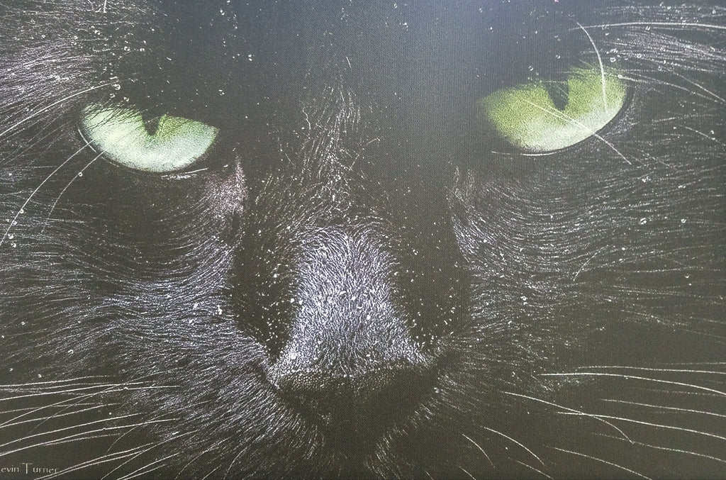 Original photo on canvas, black cat with striking eyes