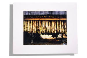 Tobacco picture with white mat, no frame