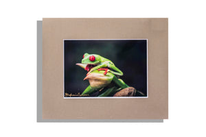 Tree frog color photo matted in brown, signed