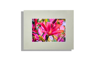 Orange/pink flowers color photo signed matted in sage