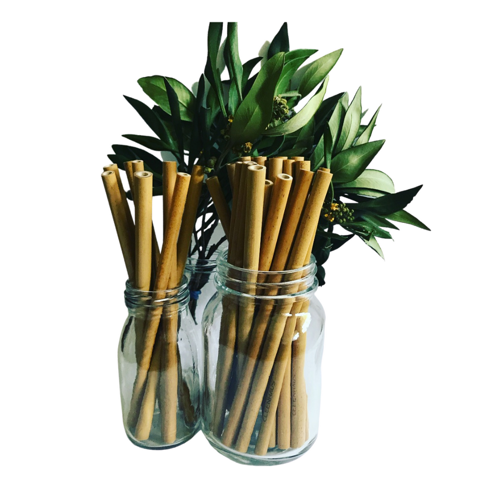 Eco Bamboo Straws - Set of 4 + Cleaning Brush & Pouch