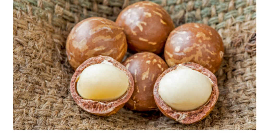 Macadamia Nuts Toxic For Burt