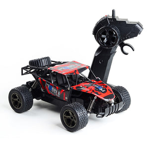RC Buggy Car For Wild | Kamory-us
