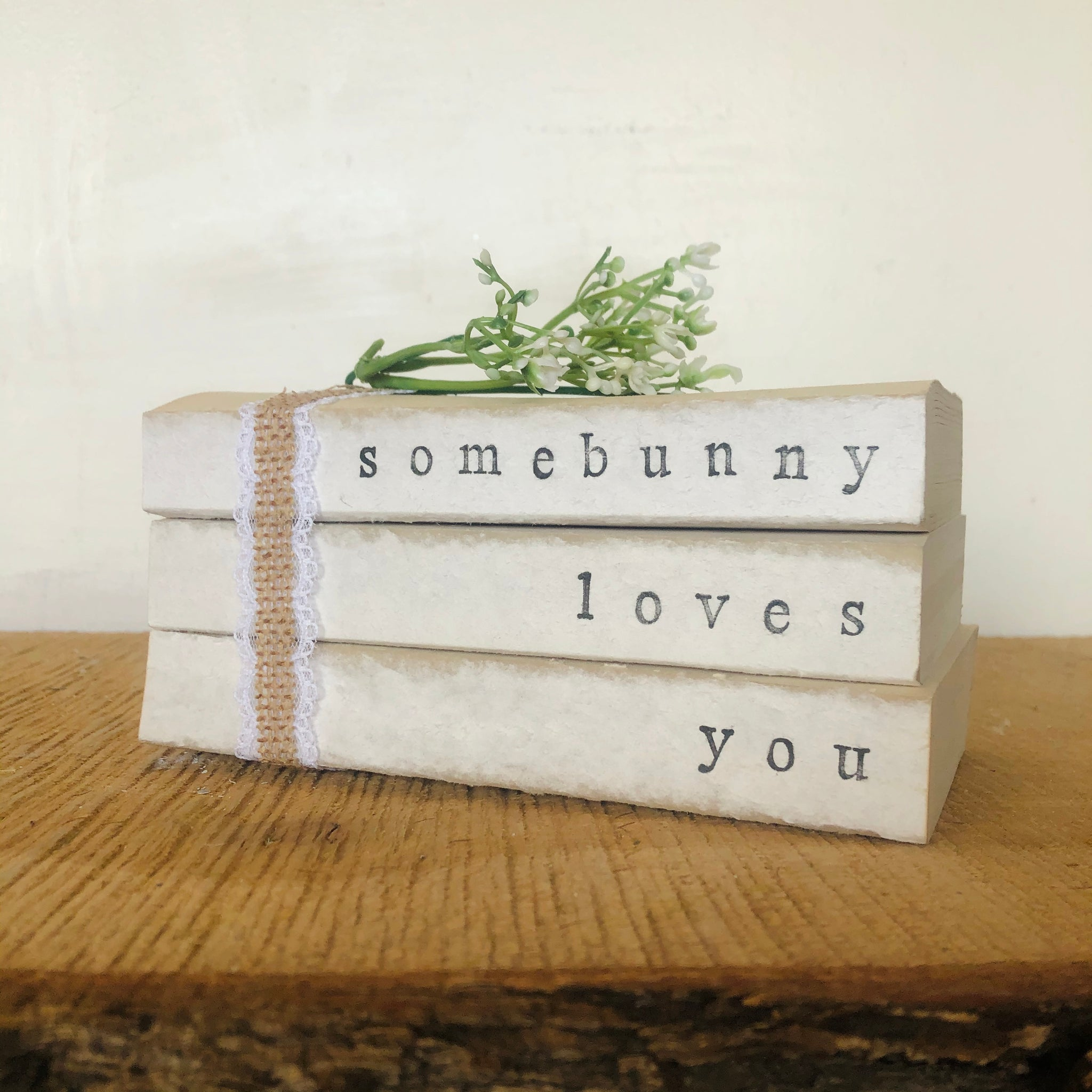 Somebunny Loves You Book Set