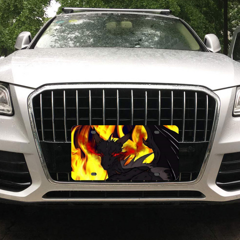 "Dragon Torrick - ""Flame"" - Metal Aluminum Automotive License Plate Plates Tag for Custom Design Work 12"" x 6"""
