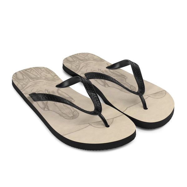 "TCoE - Melainie - ""Shadow of Secrets"" - Flip-Flops"
