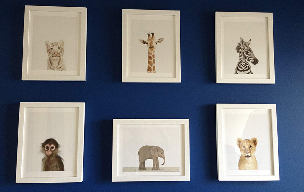 Jungle Theme Nursery - Kelvin Grove