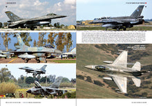 Load image into Gallery viewer, F-16 FIGHTING FALCON: 30 YEARS IN HAF SERVICE