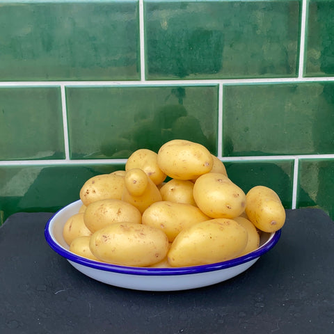 Small Waxy Potatoes 1kg