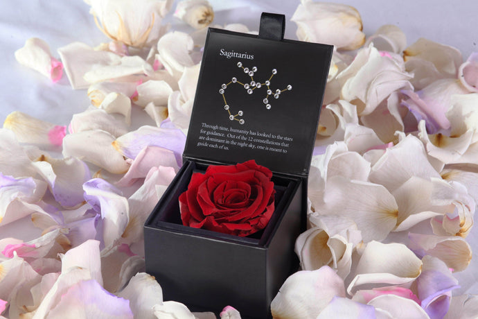 Preserved Roses Zodiac Signs and Love Compatibility