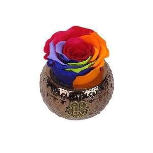 Eternal Roses® Centerpiece Rainbow Mini Soho Royal Eternal Luxury Rose