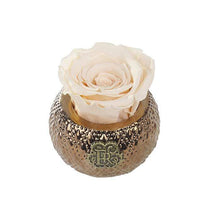 Eternal Roses® Centerpiece Champagne Mini Soho Royal Eternal Luxury Rose