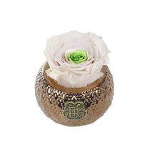 Eternal Roses® Centerpiece Chartreuse Mini Soho Royal Eternal Luxury Rose