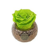 Eternal Roses® Centerpiece Mojito Mini Soho Royal Eternal Luxury Rose