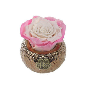 Eternal Roses® Centerpiece Sweet Pink Mini Soho Royal Eternal Luxury Rose