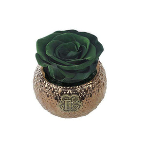 Eternal Roses® Centerpiece Wintergreen Mini Soho Royal Eternal Luxury Rose